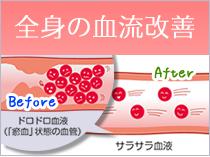 全身の血流改善